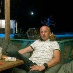 Сергей, 31 год, Новоград-Волынский
