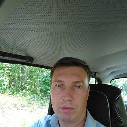 Сергей, 35 лет, Заречный