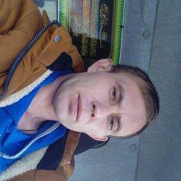 Алексей, 32 года, Кошки