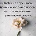 Фото Виктор, Видное, 65 лет - добавлено 13 апреля 2020 в альбом «Лента новостей»
