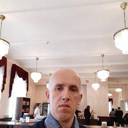 Юра, 44 года, Рыбинск