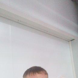 Рома, 35 лет, Белгород