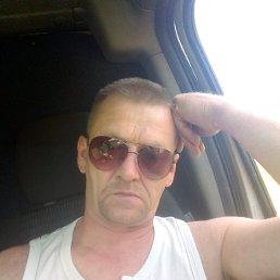 Андрей, 48 лет, Плавск