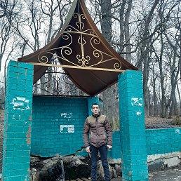 Мурад, 32 года, Саратов