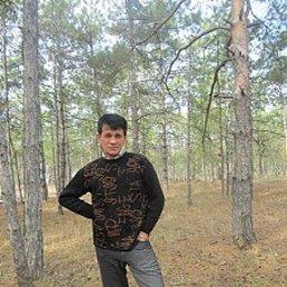 Николай, 55 лет, Херсон