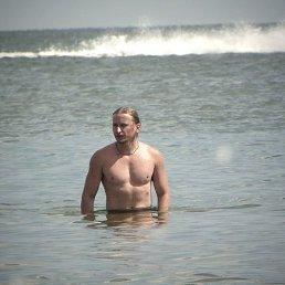 Артем, 33 года, Селидово