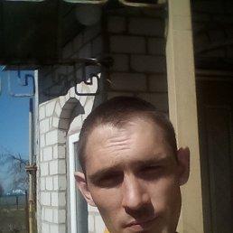 Александр, 30 лет, Черкассы