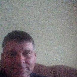 Евгений, 41 год, Кемерово