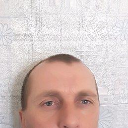 Александр, 41 год, Бреды