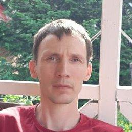 Антон, 36 лет, Кемерово