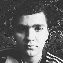 Андрей, 21 год, Краснодар
