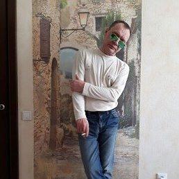 алекс, 51 год, Гатчина