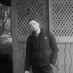 Юрий, 25 лет, Ужгород