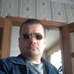 Max, 40 лет, Йошкар-Ола