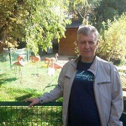 дмитрий, 49 лет, Новосибирск