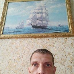 Милый, 42 года, Белгород