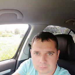 Алексей, 35 лет, Калининград