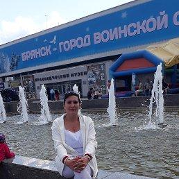 Елена, 38 лет, Брянск