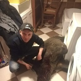 Bogdan, 31 год, Умань