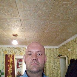 Андрей, 40 лет, Челябинск