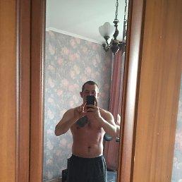 Дима, 29 лет, Домодедово