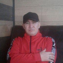 Рустем, 36 лет, Мелитополь