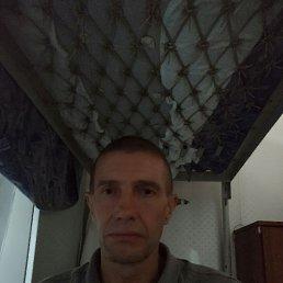 Сергей, 39 лет, Сочи