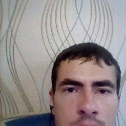Максим, 29 лет, Воронеж