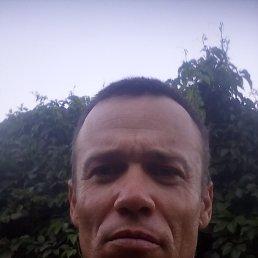 Алексей, 41 год, Мелитополь