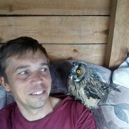 Михаил, 44 года, Куровское