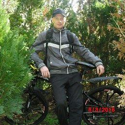 Борис, 34 года, Краснодар