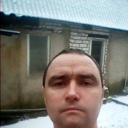 Павел, 33 года, Руза