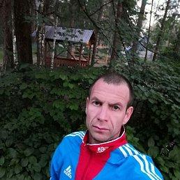 Алексей, 37 лет, Славгород