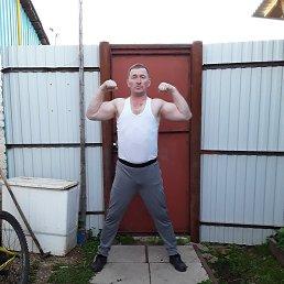 Александр, 36 лет, Глазов