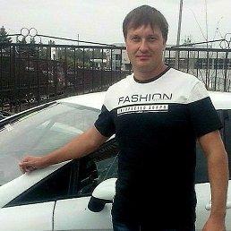 Алексей, 44 года, Дмитриев-Льговский