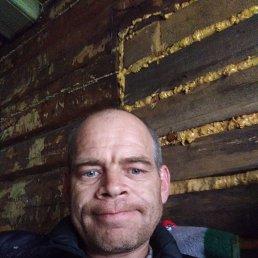 Илья, 41 год, Лесной