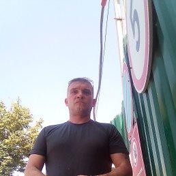 Алекс, 40 лет, Тула