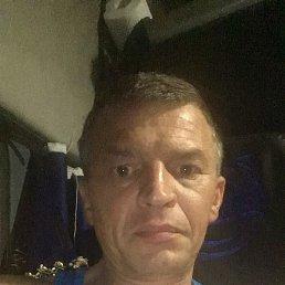 Николай, 41 год, Ефремов