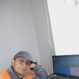 Дмитрий, 40 лет, Васильков