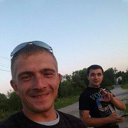 Александр, Калининград, 29 лет