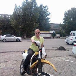 Артем, 34 года, ЗАТО Сибирский
