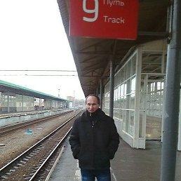 Анатолий, 44 года, Кировоград
