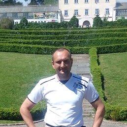 Александр, 38 лет, Бровары