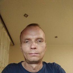 Павел, 44 года, Нижний Новгород