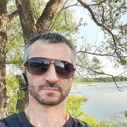 Баха, 45 лет, Бежецк