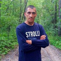 Александр, 36 лет, Кролевец