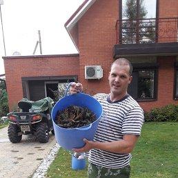 Андрей, 56 лет, Димитровград