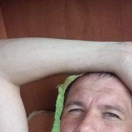 Павел, 30 лет, Белокуриха