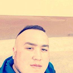 Рехан, 28 лет, Дмитров
