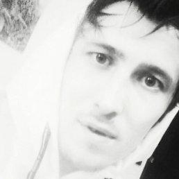 Макс, 30 лет, Дедовск